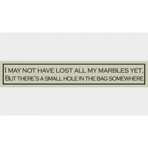 Wit with wisdom- Humorous wooden signs - Various witty words available